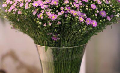 Cách cắm hoa thạch thảo đẹp tinh tế