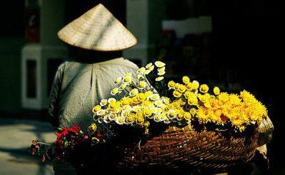 Bạn có biết hoa cúc nở vào mùa nào không?